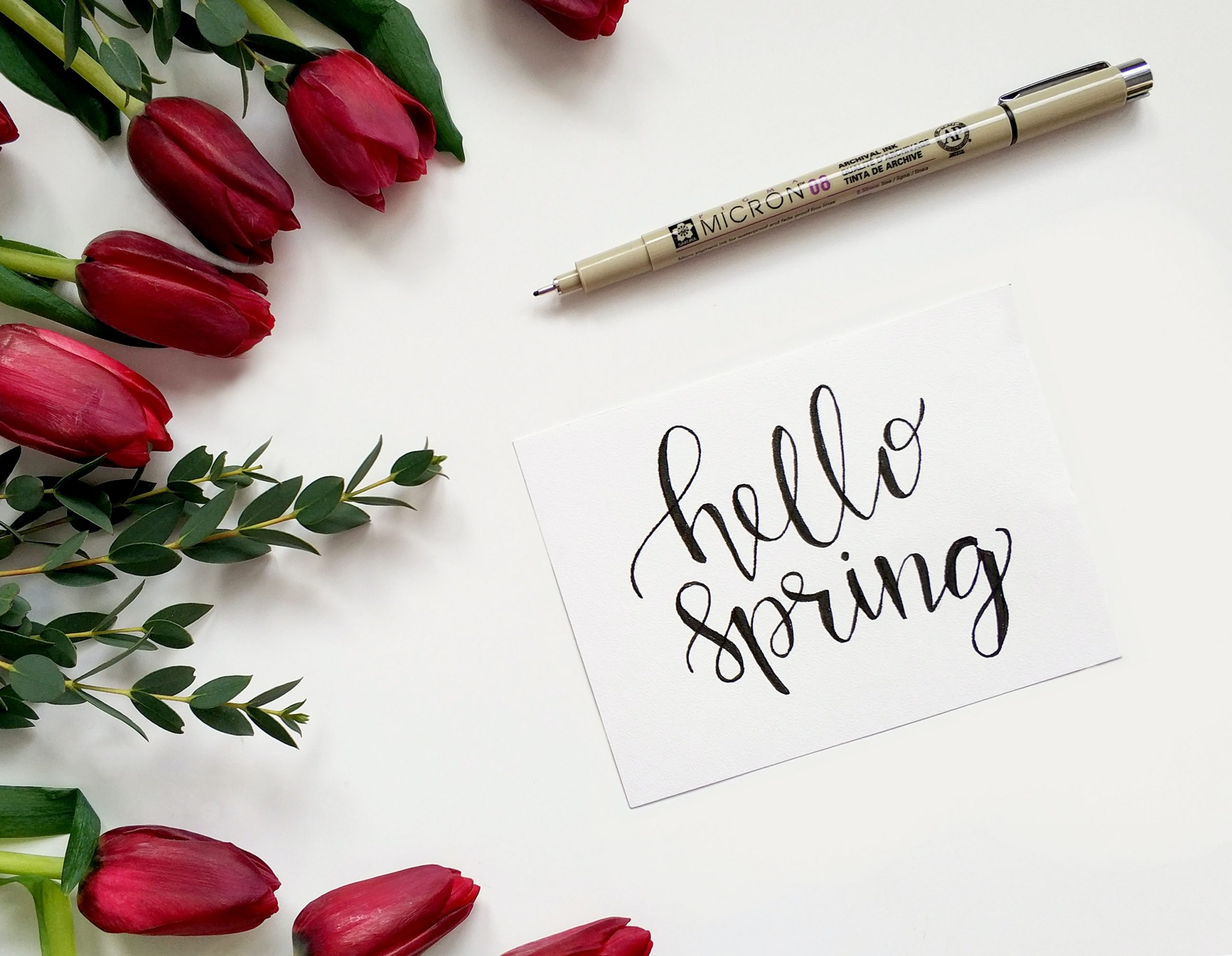Family-Friendly Spring Time Activities in NYC